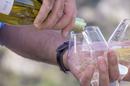 Vins du Domaine des Conquêtes à Aniane qui propose des dégustations au caveau de vente et de l'Oenotourisme (® Domaine des Conquêtes)