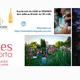 La Maison des Vins du Languedoc vous convie aux Estivales de Saporta ! (® facebook estivales saporta)